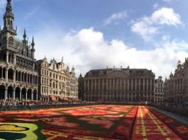 Flower Carpet 2014 #FLowerCarpet
