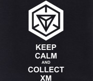 Keepcalm_ingress